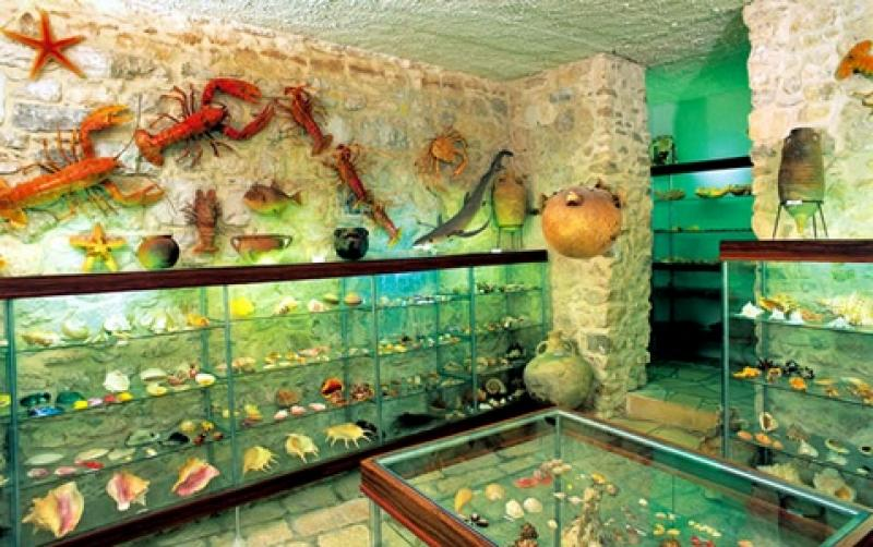 Museums Makarska