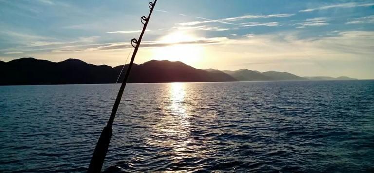 Makarska Fischen